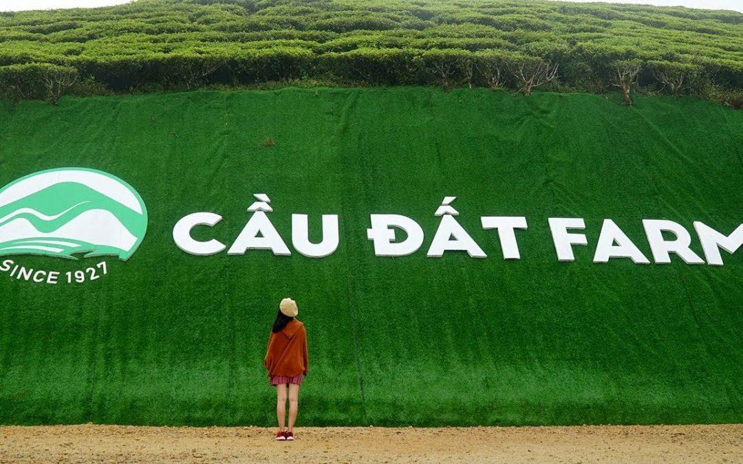 Đồi Chè Cầu Đất Farm Đà Lạt lắp đặt kệ siêu thị Việt POS Rack